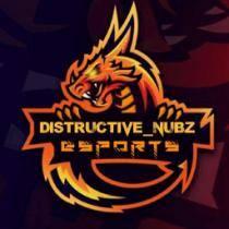 distructive-nubz-esports
